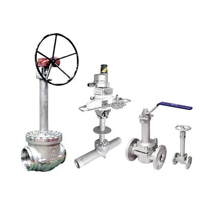 Cryogenic Needle and Ball Valves 1